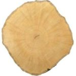 граб , плотность древесины и твердость