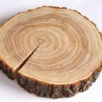 карагач , плотность древесины и твердость